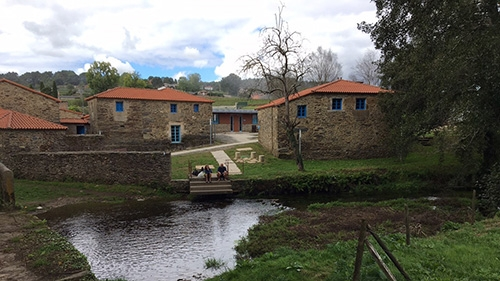 Camino Day 6: The Love We Gave